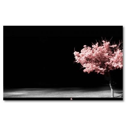 Αφίσα (ροζ, δέντρο, καλός, ιδέα, εδώ, ένας, βρέθηκαν, σήμερα, ότι, αγάπη)